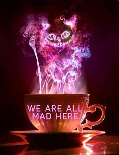 we are all mad in here