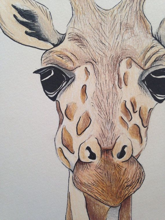 A5 giraffe face drawing using pencil and ink. by zeldaartlettering