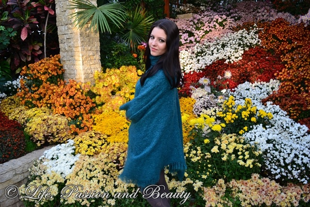 Life, passion and beauty: Outfit: Leaves and flowers of the fall