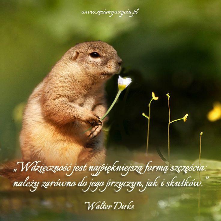 """""""Wdzięczność jest najpiękniejszą formą szczęścia: należy zarówno do jego przyczyn, jak i skutków."""" – Walter Dirks"""