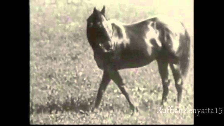 Man O' War Rare Video