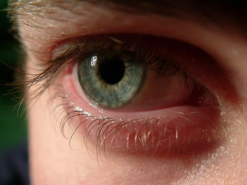 Watch out liars or uh.. don't watch out. Close your eyes!  New #Technology Detects Lies By Reading Eye Movement