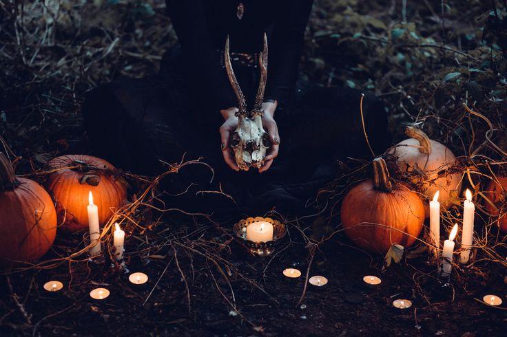 https://flic.kr/p/Nt6C4Q | Spooky halloween scene | Get more free photos on freestocks.org