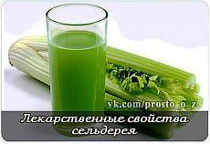 Сельдерей - прекрасное средство для укрепления расстроенных нервов.