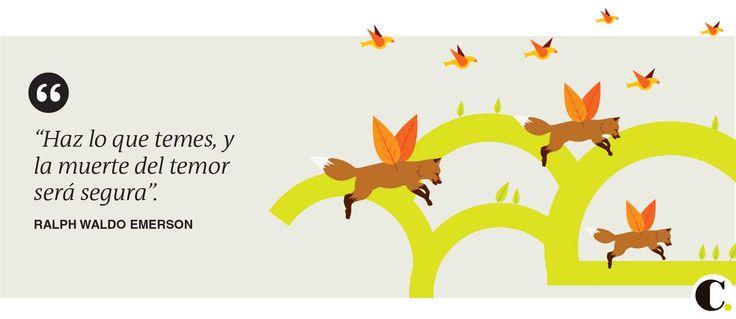 Frase publicada en El Colombiano el sábado 1 de noviembre de 2014