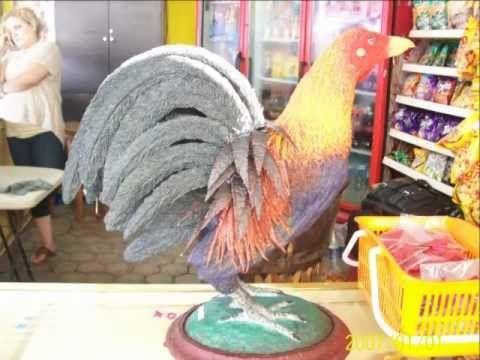 gallo de pelea kelso - YouTube