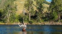Relocate to Montana | Real Estate | Things to Do in Montana