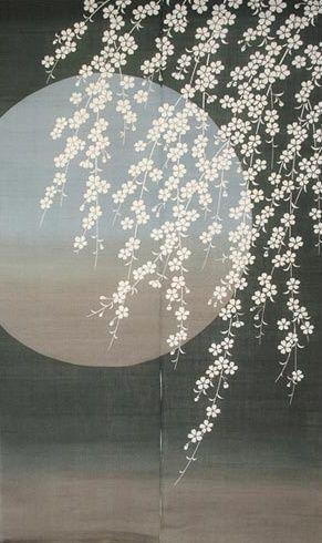 Japanese noren