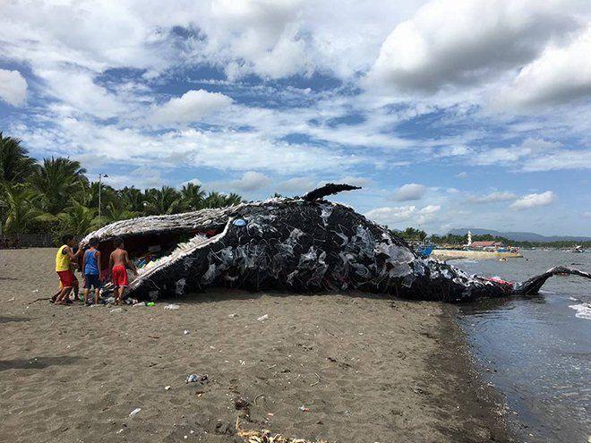 Cette baleine en plastique a été installée par Greenpeace aux Philippines pour alerter sur les dangers de la pollution plastique dans les océans