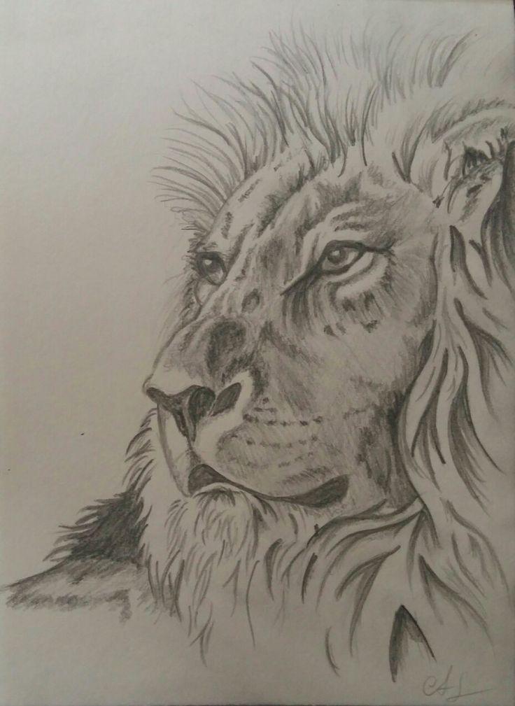 Lwe gezeichnet nach Vorlage  Meine Zeichnungen in 2019