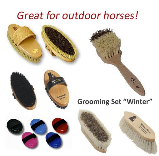 how to clean horse grooming brushes