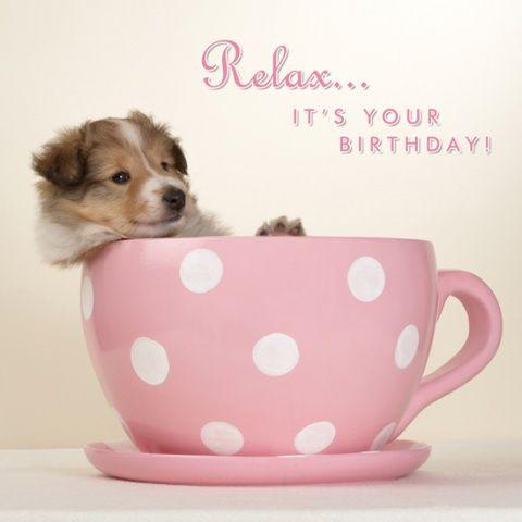 Kartka urodzinowa Pup In A Cup