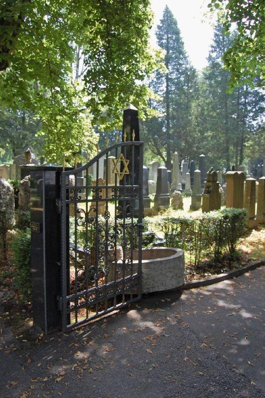 Eingangstor mit Davidstern: Der jüdische Friedhof in Konstanz wurde 1869 als Teil des Städtischen Friedhofs in der Wollmatinger  Straße eingerichtet. Zuvor wurden  die Toten der Gemeinde in Gailingen oder Randegg beigesetzt. Er wurde in der NS-Zeit nicht zerstört und wird bis heute belegt. 1981 wurde der jüdische Friedhof das letzte Mal erweitert.