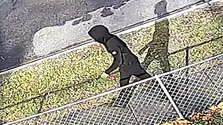 Detectives from the Metropolitan Police Department's Homicide Branch are investigating a homicide. Investigators seek the public's assistance in identifying and locating a person of interest in a Homicide which occurred on Tuesday, December 27, 2016, at approximately 1:19 PM in the 800 block of Xenia Street, SE. The subject was captured by nearby surveillance cameras.