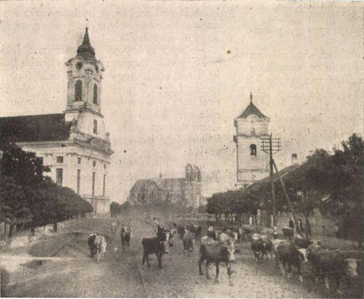 Hazatérés a legelőről. Forrás: Ország-Világ, 39. évf. 35. sz., 1918. aug. 25.