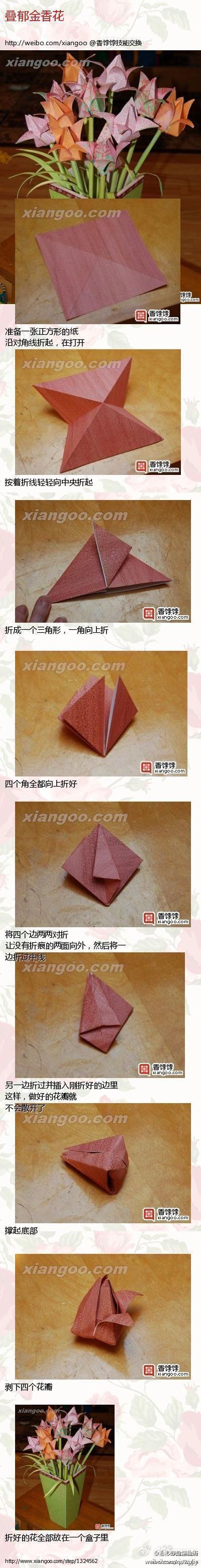 Flamenko Star Folding Directions Craft Ideas T Origami Bird Curler Diagram Kusudama Me Craftsorigami Pinterest Tulip Flower Diy Tutorial