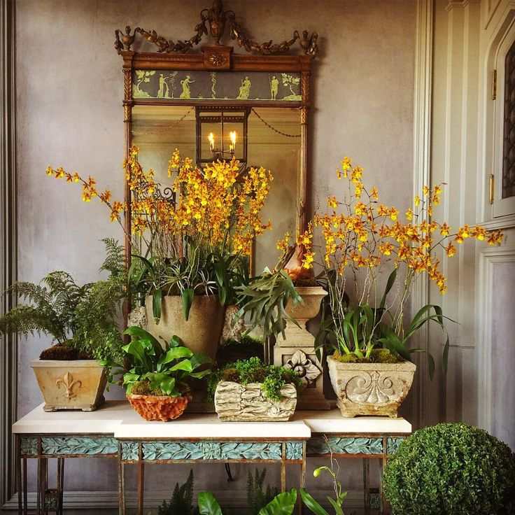 The Lush Portico Entry To One Of The Most Beautiful Houses