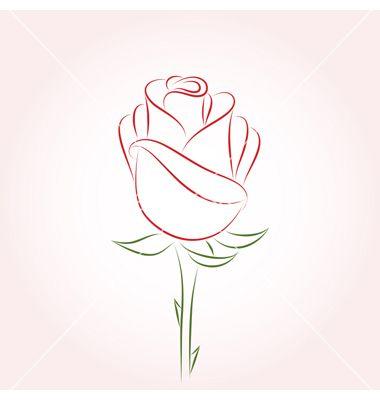 Rose vector on VectorStock®