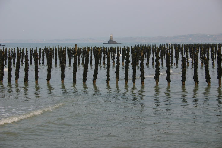 Bretagne - Les bouchots dans la Baie