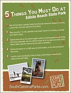 Top Five Things to Do at Edisto Beach