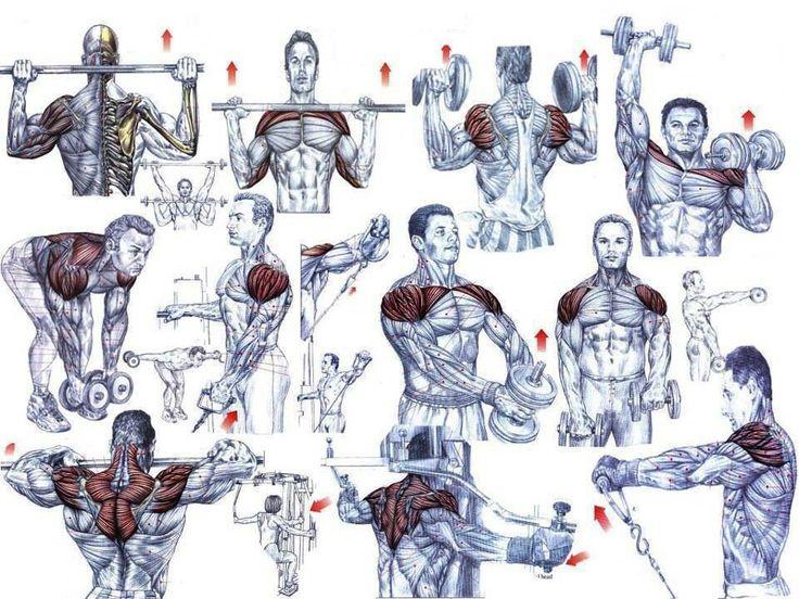 Ejercicio hombro-espalda