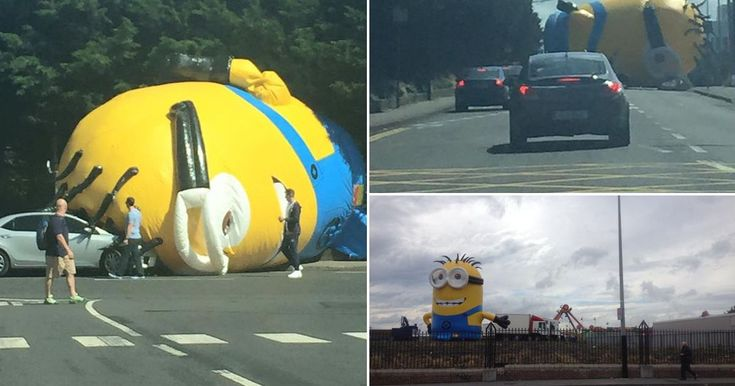 The massive yellow creature, star of the Despicable Me and Minions films, created traffic chaos earlier today