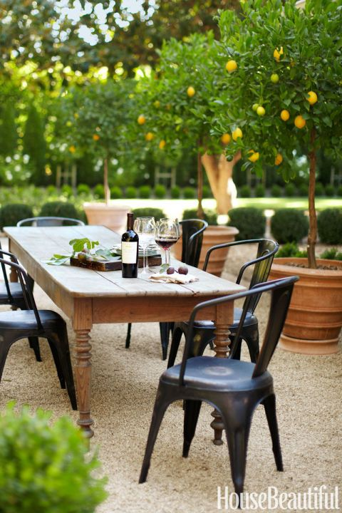Potted Citrus: Add ambiance to an outdoor dining area with a group of topiaries.Click through for more backyard landscape ideas.