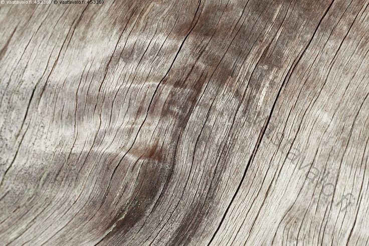 Kelo Clothesline Interesting 45 Best Kelo Images On Pinterest  Alder Tree Ancient Scripts And 2018