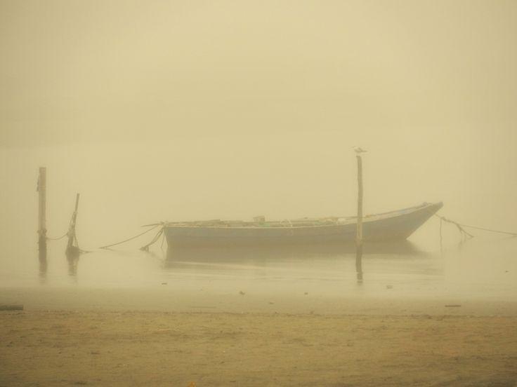 Atmosfera nella nebbia