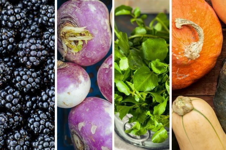 De 41 voedzaamste etenswaren op aarde | Wetenschap in Beeld