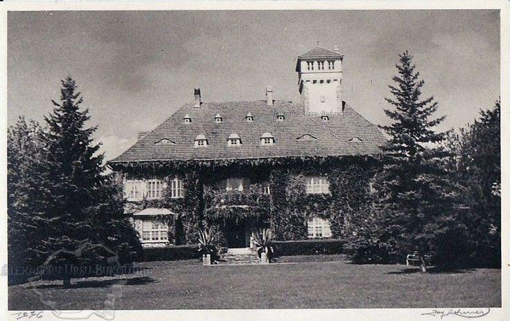 Storojineţ. Plasa Flondoreni. Oraşul Storojineţ. Villa Orenstein.