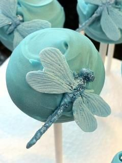 Beautiful dragonflies