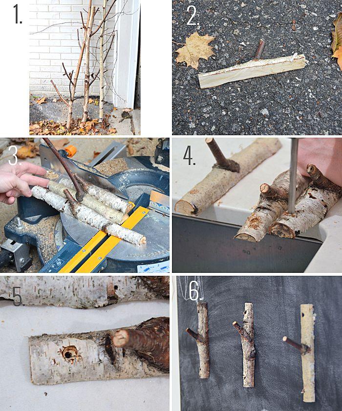 DIY Birch Branch Hooks.
