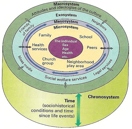 bronfenbrenner s bioecological model of development