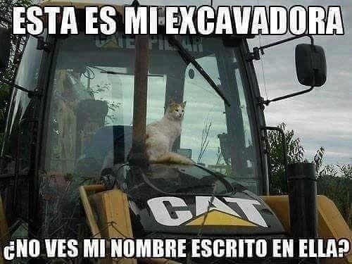 CAT #memes #chistes #chistesmalos #imagenesgraciosas #humor www.megamemeces.c... ☛ http://www.diverint.com/memes-risa-gratis-inventando-chismes-julion-alvarez