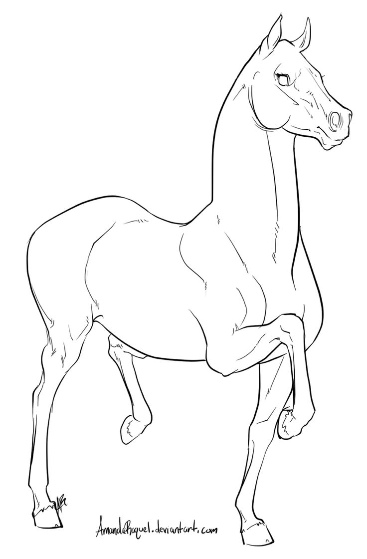Farm animal horse coloring pages - Horse Coloring Pages