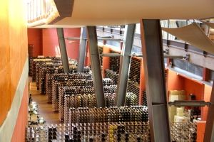 National Wine Centre of Australia... from http://www.tortoiseonthemove.com/1-day-adelaide-itinerary/