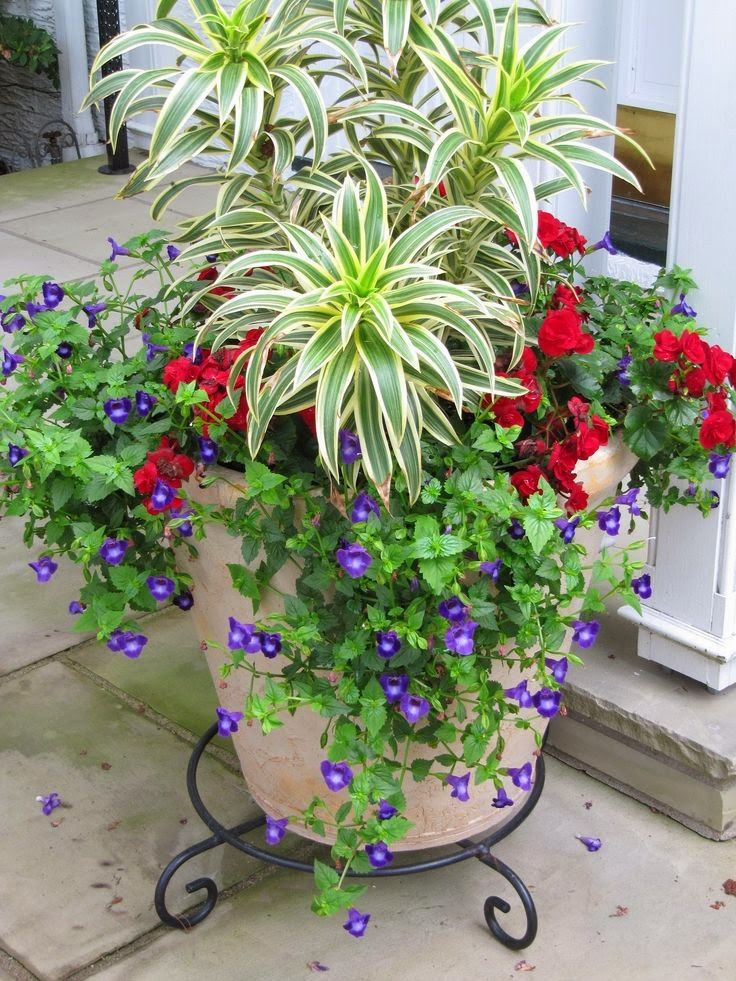 Wonderful Not Only Do I Love The Arrangement, But I Love The Plant Stand Under It