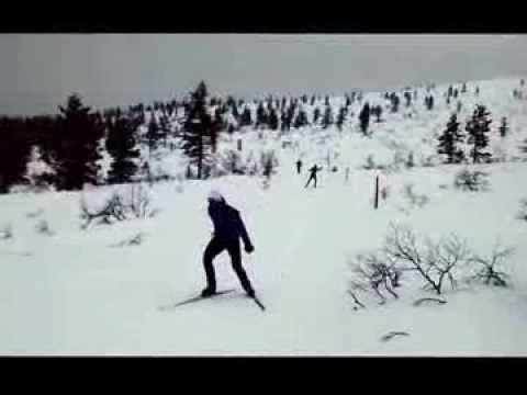 Una nueva edición del viaje de Esquí de fondo en Laponia 2014 dia 3 - YouTube con http://samaexpediciones.es/viajes/esqui-de-fondo-en-laponia/