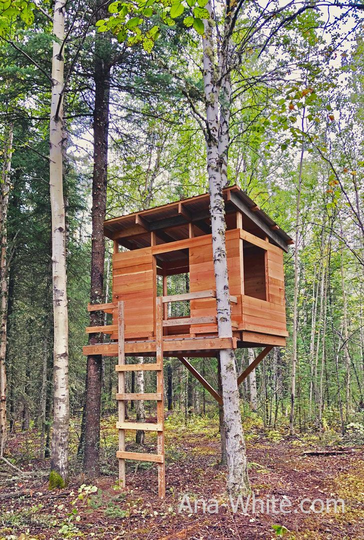 Modern Kids Treehouse Ana White Tree House Tree House Plans Simple Tree House