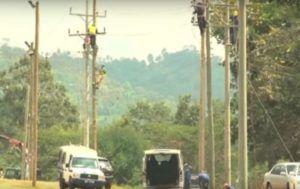 Monkey trips kenya's national grid