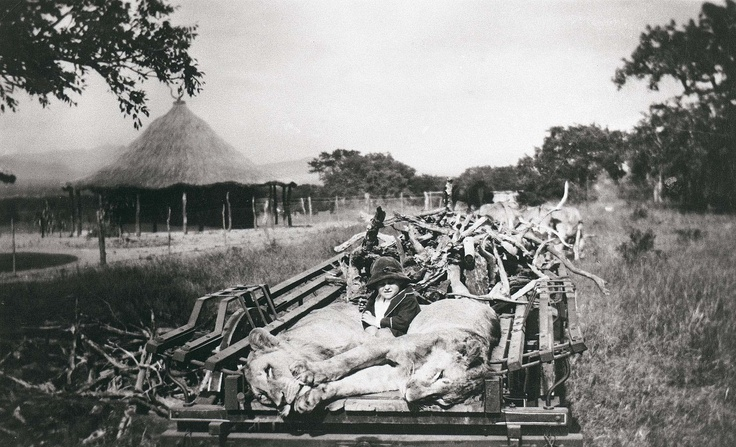 This Day in History: Mar 26, 1898: Hunting is prohibited in the area that is now the Kruger National Park http://www.history.com/this-day-in-history