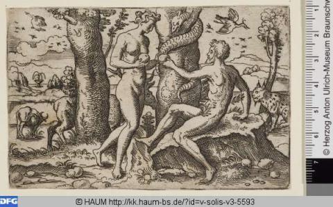 Zondeval. Virgil Solis. 1553. Binnen het christelijk geloof worden vaak voorbeelden uit de Bijbel gebruikt om te waarschuwen voor de verleiding en listigheid van de vrouw. Eva verleidt haar man tot ongehoorzaamheid door van de verboden vrucht te eten in het Paradijs. De zwakke aard van de vrouw leidt zo tot de zondeval en de verdrijving uit het Paradijs.