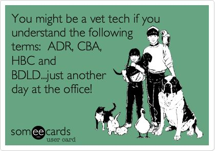 Vet tech/assistant lingo...reminds me of our Care days together @Jenn L woods (its not another day in the office, but I understand! which I could find a place that would hirer me! :