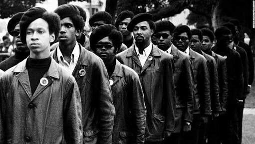 O Partido dos Panteras Negras, originalmente denominado Partido Pantera Negra para Auto-defesa foi uma organização política extraparlamentar socialista revolucionária norte-americana e ligada ao nacionalismo negro.