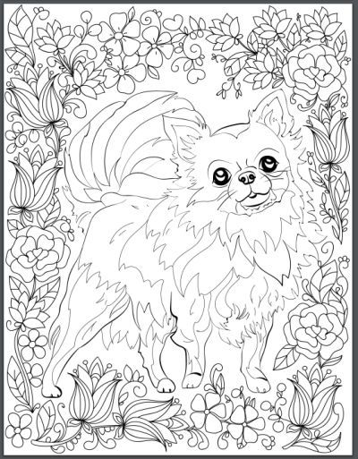 172 best Dog Coloring images on Pinterest | Coloring books ...