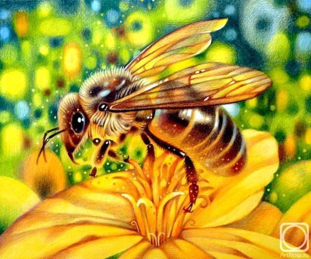 Мёд и воск — одни из самых востребованных продуктов в Средние века (да и не только в Средние), а потому огромное значение придавалась этим маленьким, но столь ценным насекомым. Большой денежный штраф, сопоставимый со штрафом за кражу быка, налагался на того, кто был уличен в краже или в уничтожении улья. Каралось также спиливание в лесу деревьев, где находился дикий пчелиный рой. Пчела, которая трудилась от восхода до заката, была символом семьи. А еще существовало милое поверье: увидев…