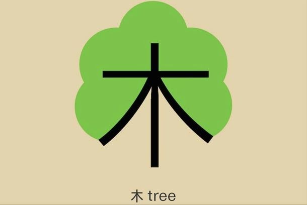 - Le Chinois pour les nuls ! - Shao Lan Hsueh a voulu faciliter l'apprentissage de la langue chinoise  en rendant les 20.000 idéogrammes qui la composent plus ludiques. Pour ce faire, elle leur fait incarner ce qu'ils désignent.