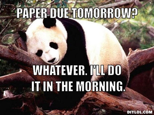 Panda bear essays