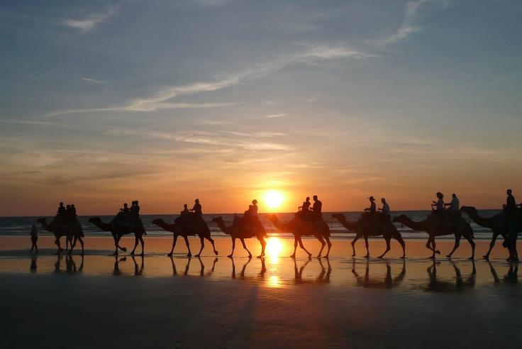 Camel ride Darwin Australia